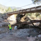 Pinewood Springs – Roads and Bridges Reconstruction Status Update